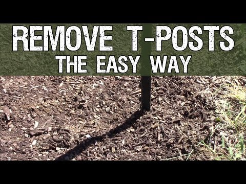 How To Remove T Posts THE EASY WAY