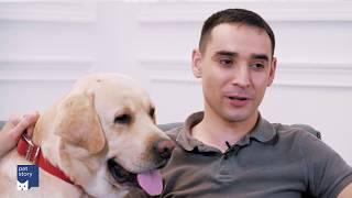 Как подстричь когти собаке в домашних условиях?