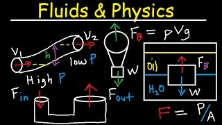 vuclip Fluid Pressure, Density, Archimede & Pascal's Principle, Buoyant Force, Bernoulli's Equation Physics