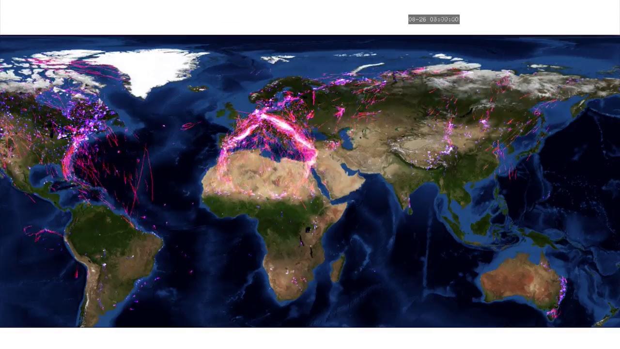 Global animal movements based on movebank data map youtube global animal movements based on movebank data map gumiabroncs Image collections