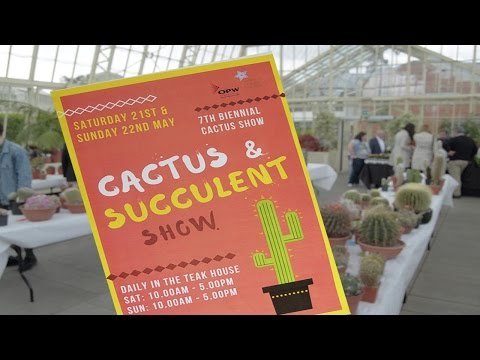 Cactus & Succulent Show - The National Botanic Gardens of Ireland