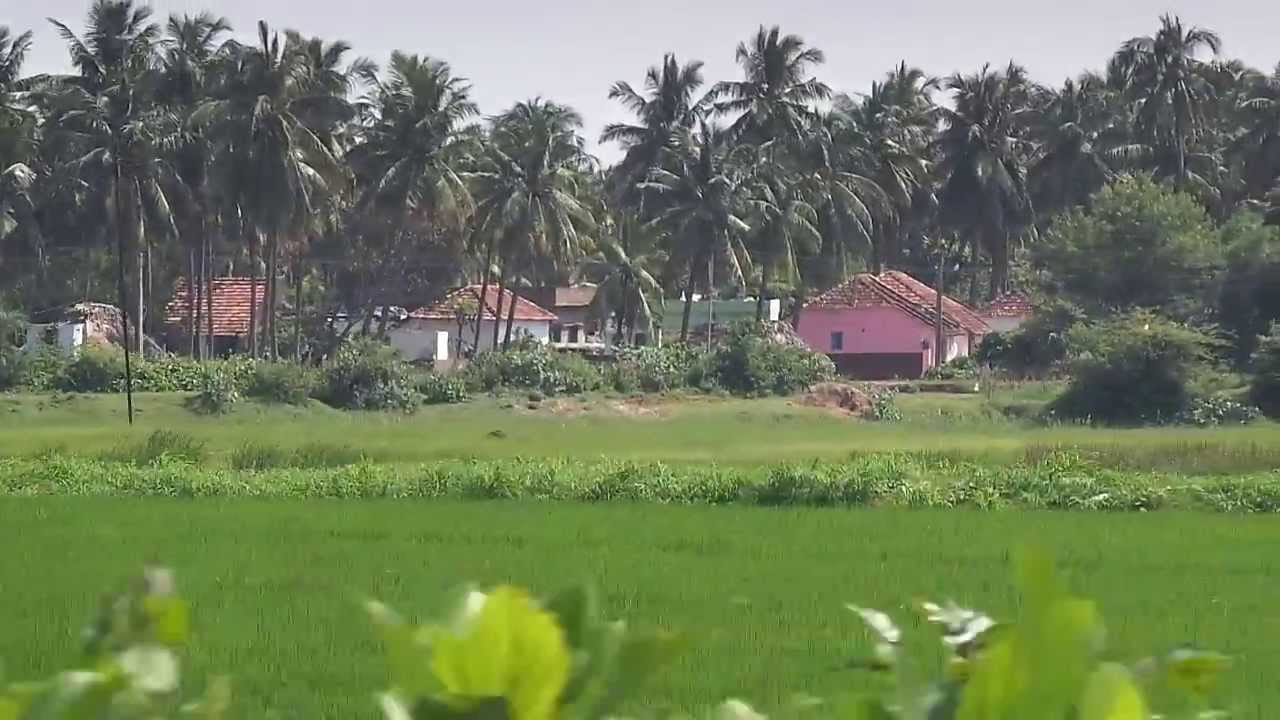Beautiful indian villages in east godavari district, Andhrapradesh ...