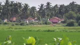 Beautiful indian villages in east godavari district, Andhrapradesh