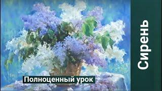 СИРЕНЬ  40*50 Никифоров Сергей 16.02.17г. |  РИСУЕМ ОНЛАЙН |