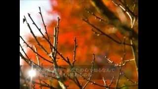 Popular Videos - 堀江童子