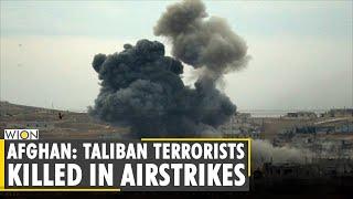 Afghan defence: 20 Taliban terrorists killed in airstrikes in Badakhshan province