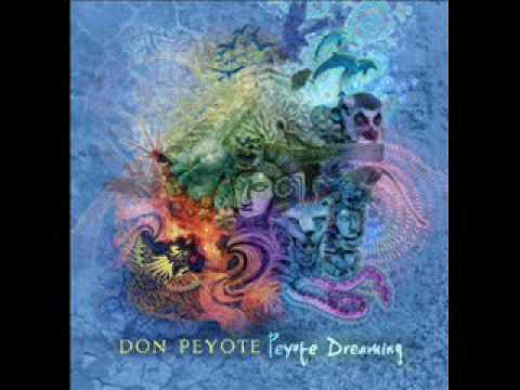 Don Peyote - 2012 A Dub Odyssey