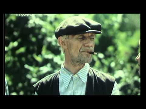 Čistý štít  -  Josef Kemr