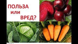видео Польза и вред ранних овощей