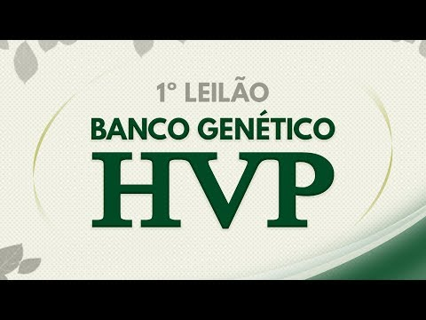 Lote 50 (HPV 501 / HVP 126 / HVP 495)