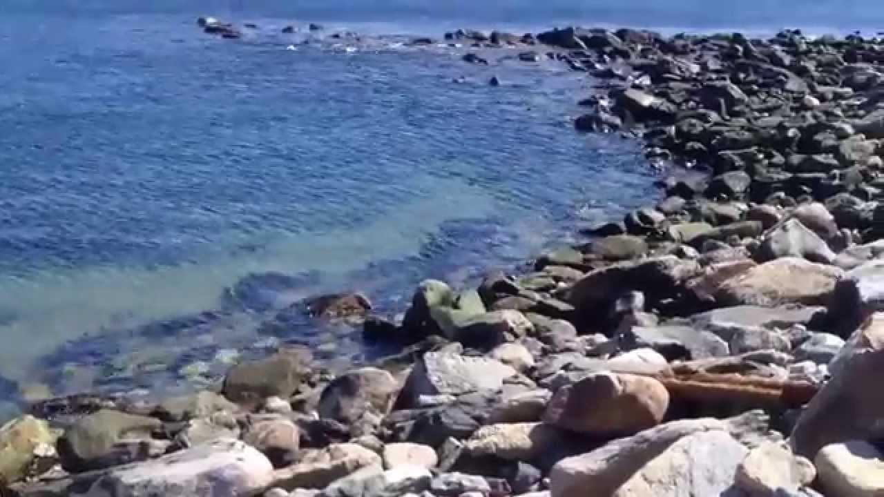 Rhode island striped bass fishing narragansett towers for Striper fishing ri