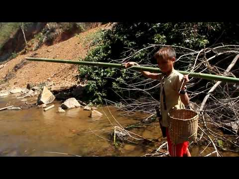 Vital Indigenous Knowledge: Fishing in Kayah, Myanmar