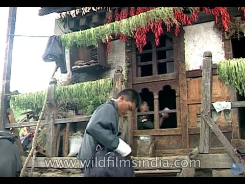 Postman delivers letters in Punakha, Bhutan, circa 1995