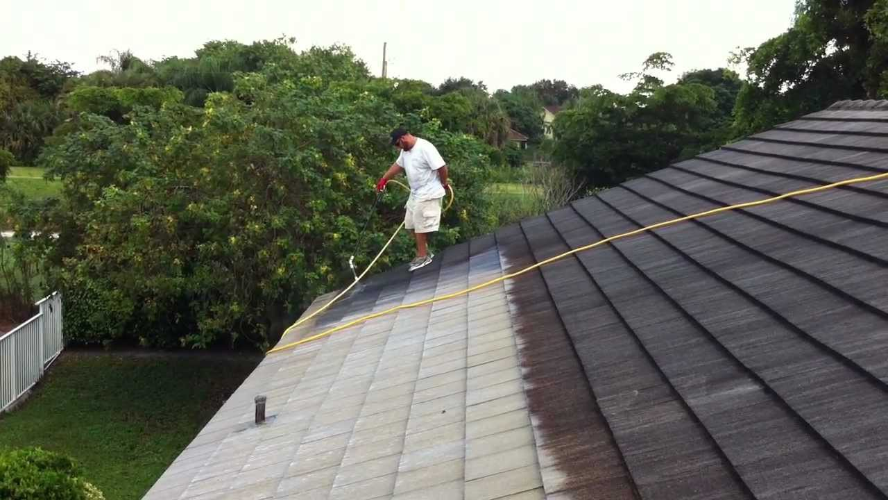 Chemical Roof Cleaning By Lenz Pressure Cleaning In West