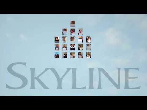 Skyline Group of Companies