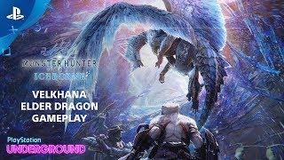Monster Hunter World: Iceborne - Velkhana Gameplay   PlayStation Underground
