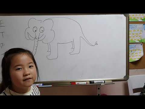 Washing the elephant. Monica