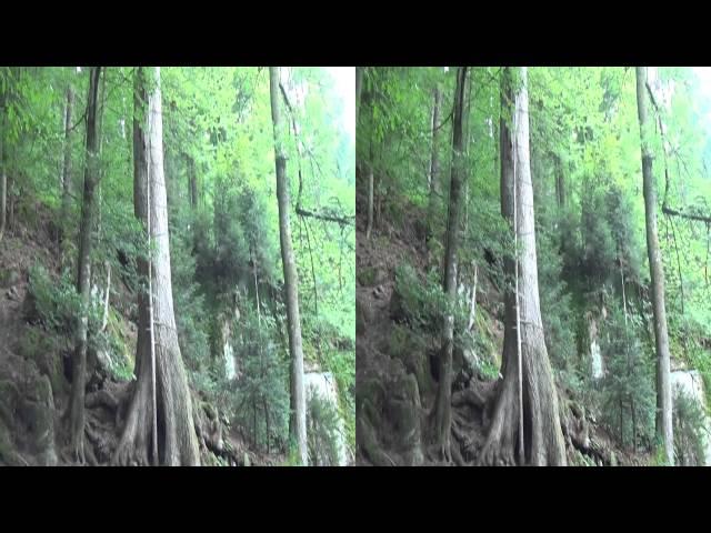 Cascadas de Triberg y cucos - Alemania en 3D