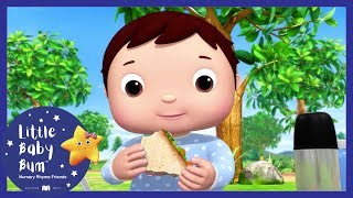 Sunny Days + More! | Little Baby Boogie | LBB | Nursery Rhymes For Babies thumbnail