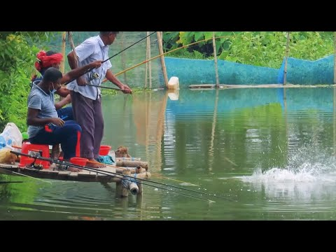 Best Village Fish Hunting Videos By The Village Anglers
