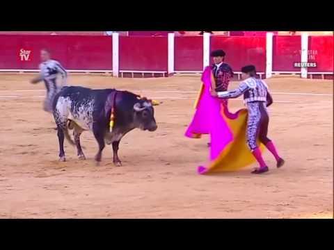 Matador killed in Spain bullfight   Waptubes Com