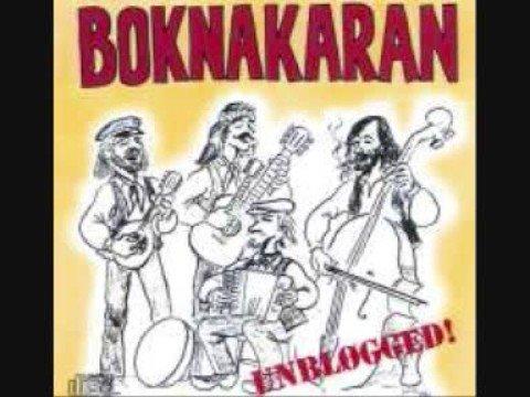 Boknakaran - Hortensia