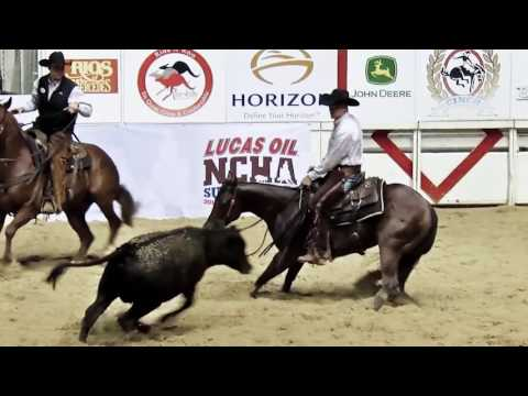 NCHA - The Sport of Cutting Horses