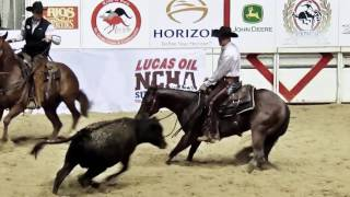 NCHA - The Sp๐rt of Cutting Horses