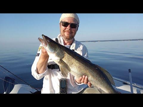 СУДАК на поролон, ЩУКА на силикон. Рыбалка на джиг на Горьковском море.