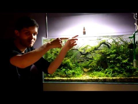 aquauga.lt #5 video VIMI STIMULATOR (demo)