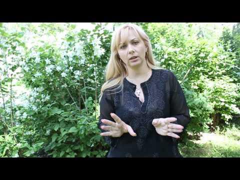 Метод сильва видео уроки ирина гусева