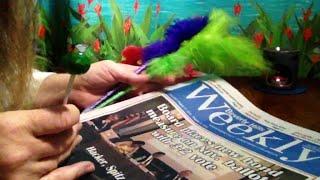 Beverly Hills Weekly, Browsing Headlines, Ads, Classified, Soft Spoken ASMR, Tootsie Roll Pop