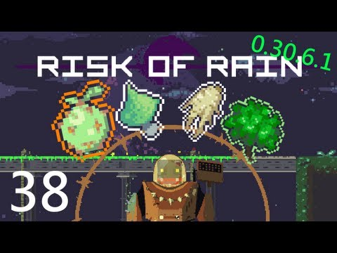 Risk of Rain 38: Organic