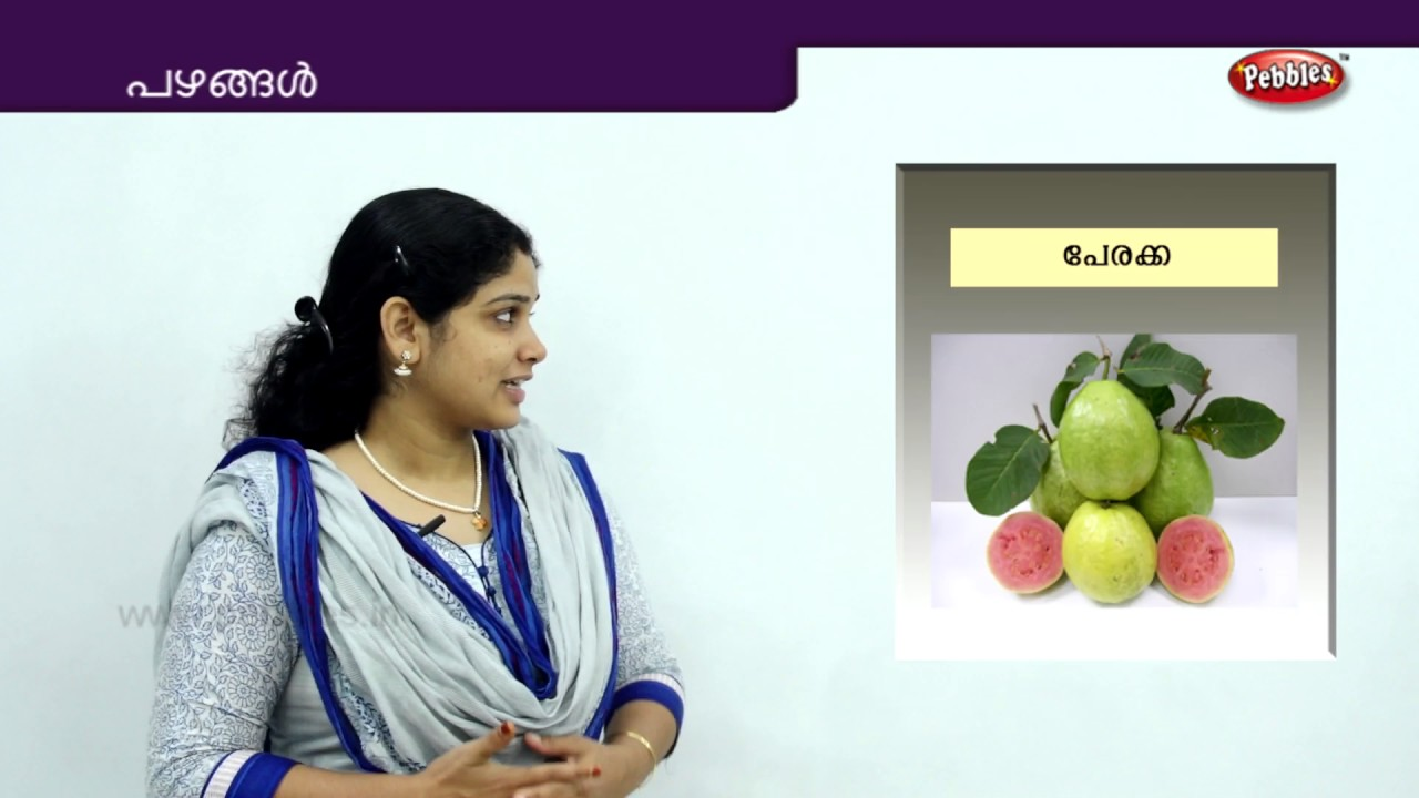 Learn Fruits Names in Malayalam Pazhangal