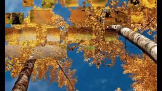 Видеосопровождение к песне Осень(футажи, видео для монтажа и визуальное сопровождение различных мероприятий., 2017-03-02T08:05:48.000Z)