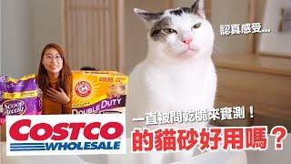 每次逛好市多都被問-costco的貓砂到底好不好用-好味貓開箱-ep14