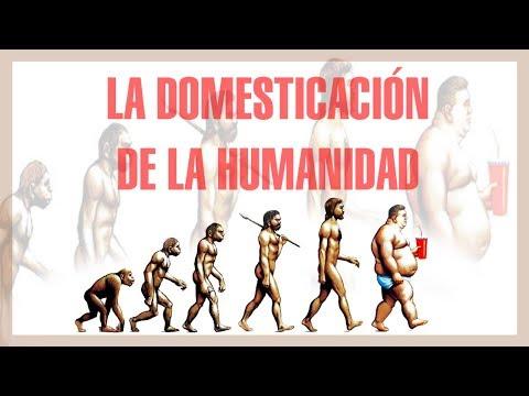 La domesticación de la humanidad - Mini Documental