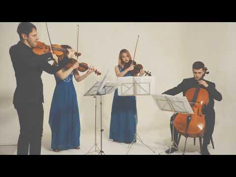 All Of Me (John Legend) String Quartet Cover by the Endymion String Quartet