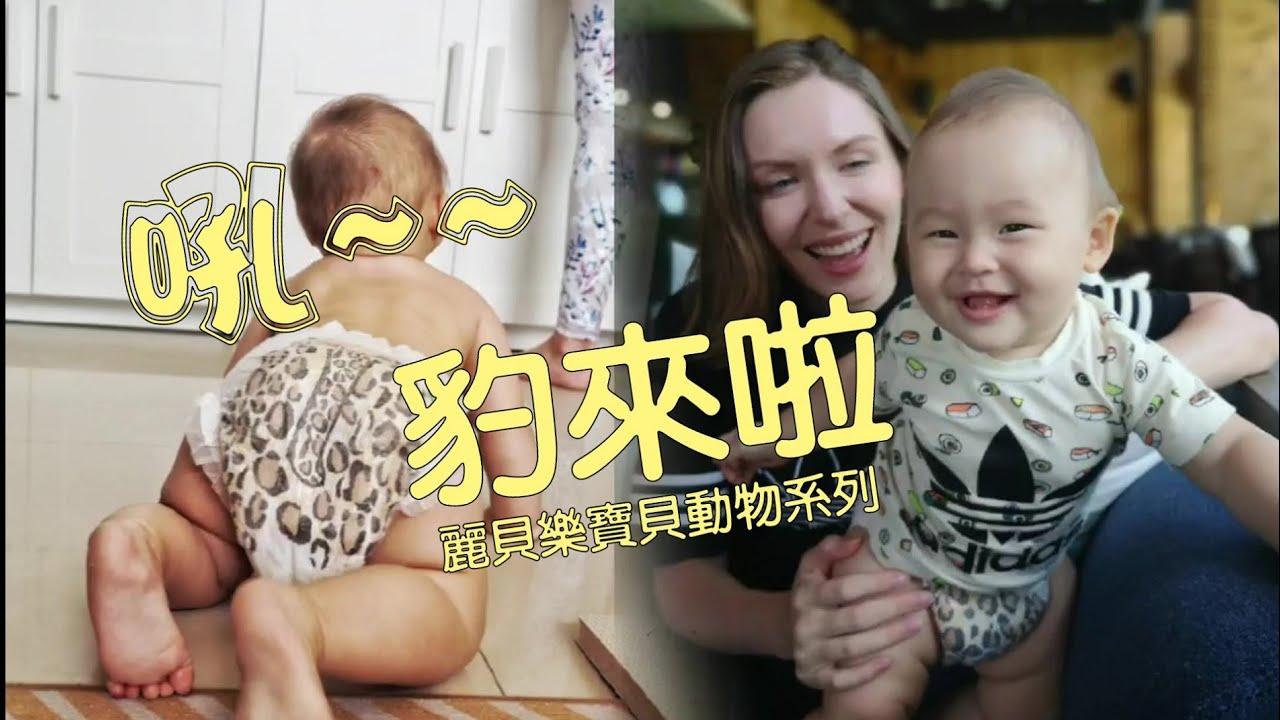 尿布界的愛馬仕來了!! 麗貝樂寶貝動物超時尚豹紋尿布,勵家人唯一推薦!! Fashionable Leopard Print Babies Diaper From Sweden Libero