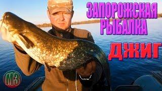 Ловля СОМА и СУДАКА на джиг Запорожская область