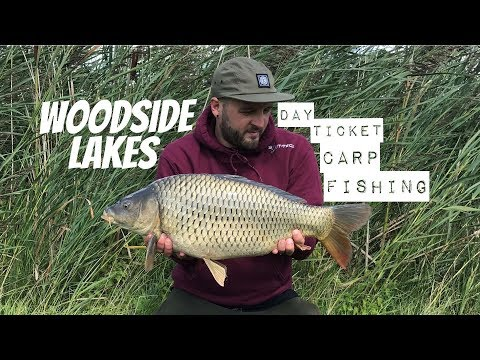 Summer Day Ticket Carp Fishing || Woodside Lakes || Martyns Angling Adventures