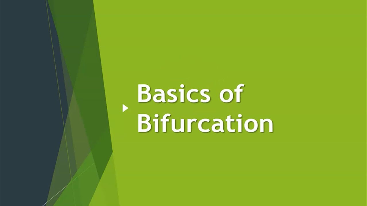 Basics of Bifurcation