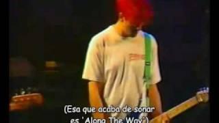 Bad Religion - Do What You Want en vivo (con subtítulos en español)