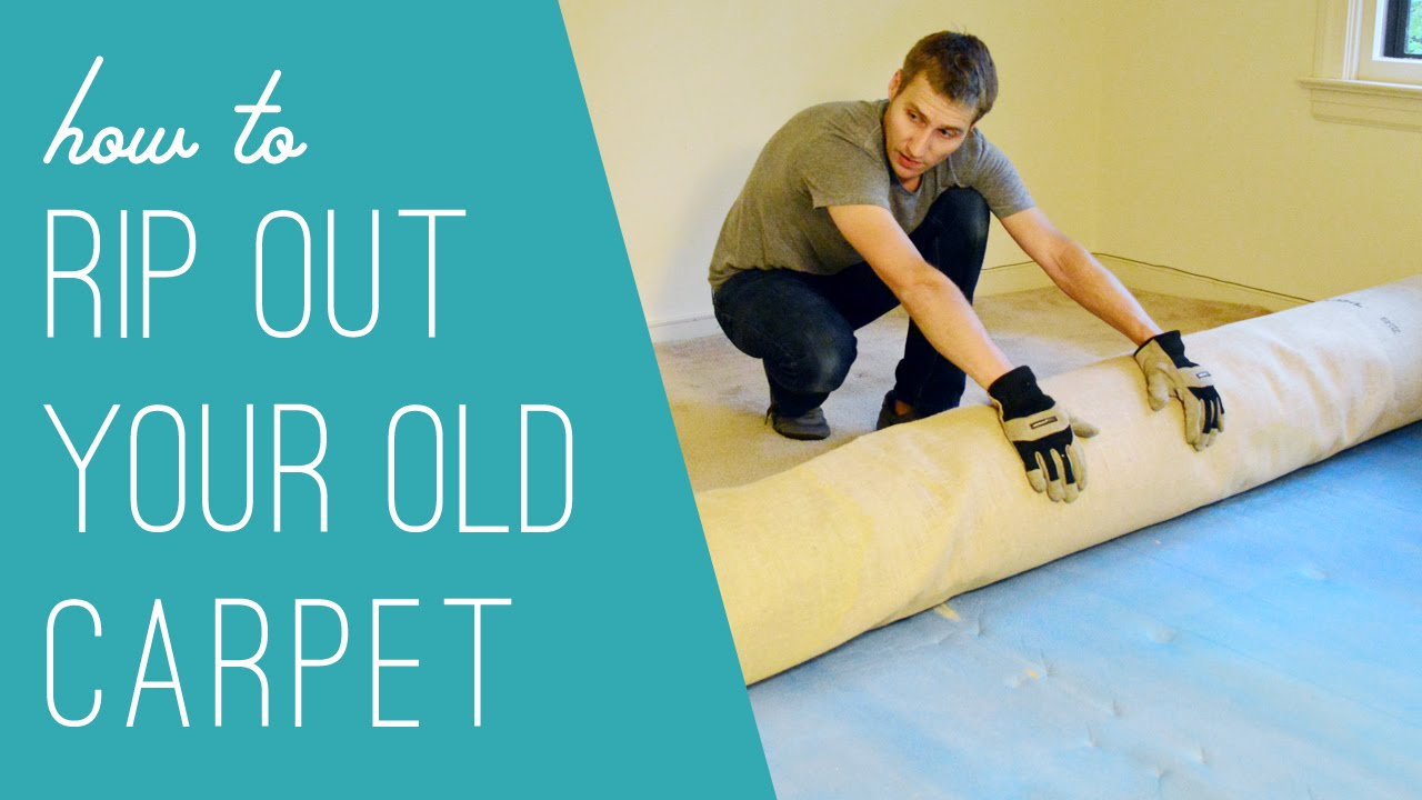 Ripping Out An Old Carpet Youtube