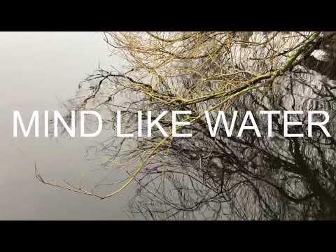 MIND LIKE WATER  Sophie Hassfurther - Oğuz Büyükberber