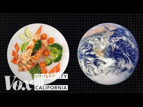 The Diet That Helps Fight Climate Change