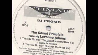The Sound Principle featuring Lovonne Adams - There Is No Way (Original Mix) [1994]