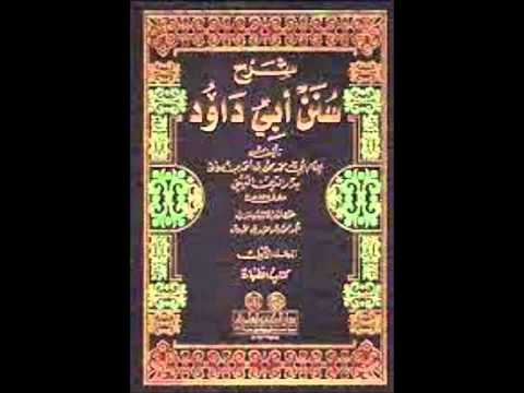 Sunan Abu Dawud  Sh/ Hassen Abdallah part 7