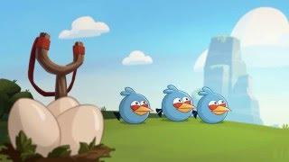 Злые птички - Энгри Бердс - Охота за Синими птицами (S3E10) || Angry Birds Toons 3 season