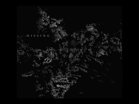 Hissing - Husk